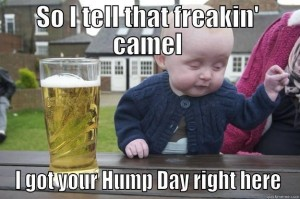 1452919590-121103-Hump-Day-Camel